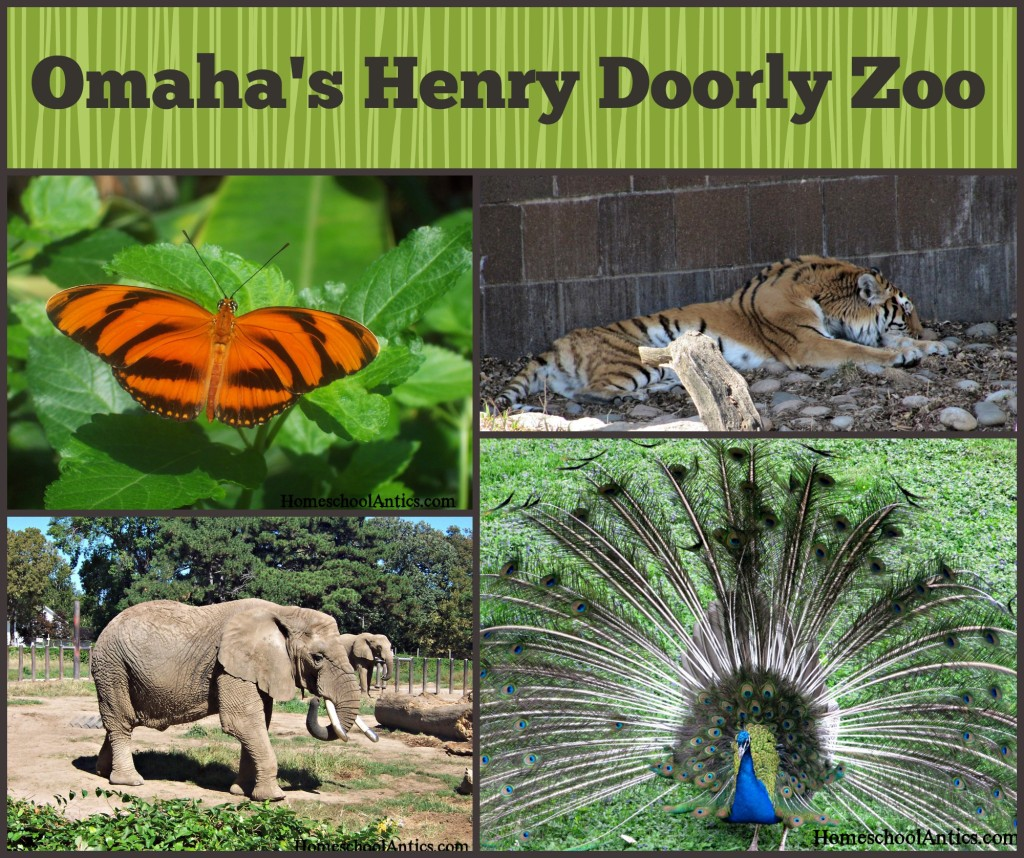 Omaha's Henry Doorly Zoo: Educational resources