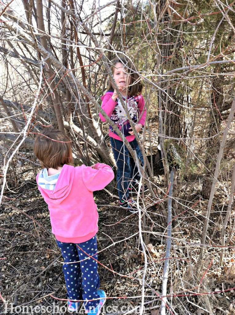 Geocaching search