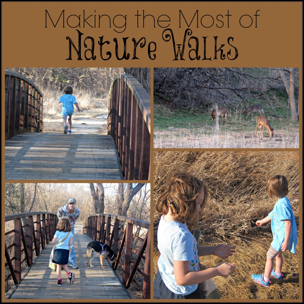 Nature Walk Activities