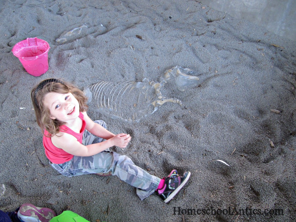 Henry Doorly Zoo fossil dig