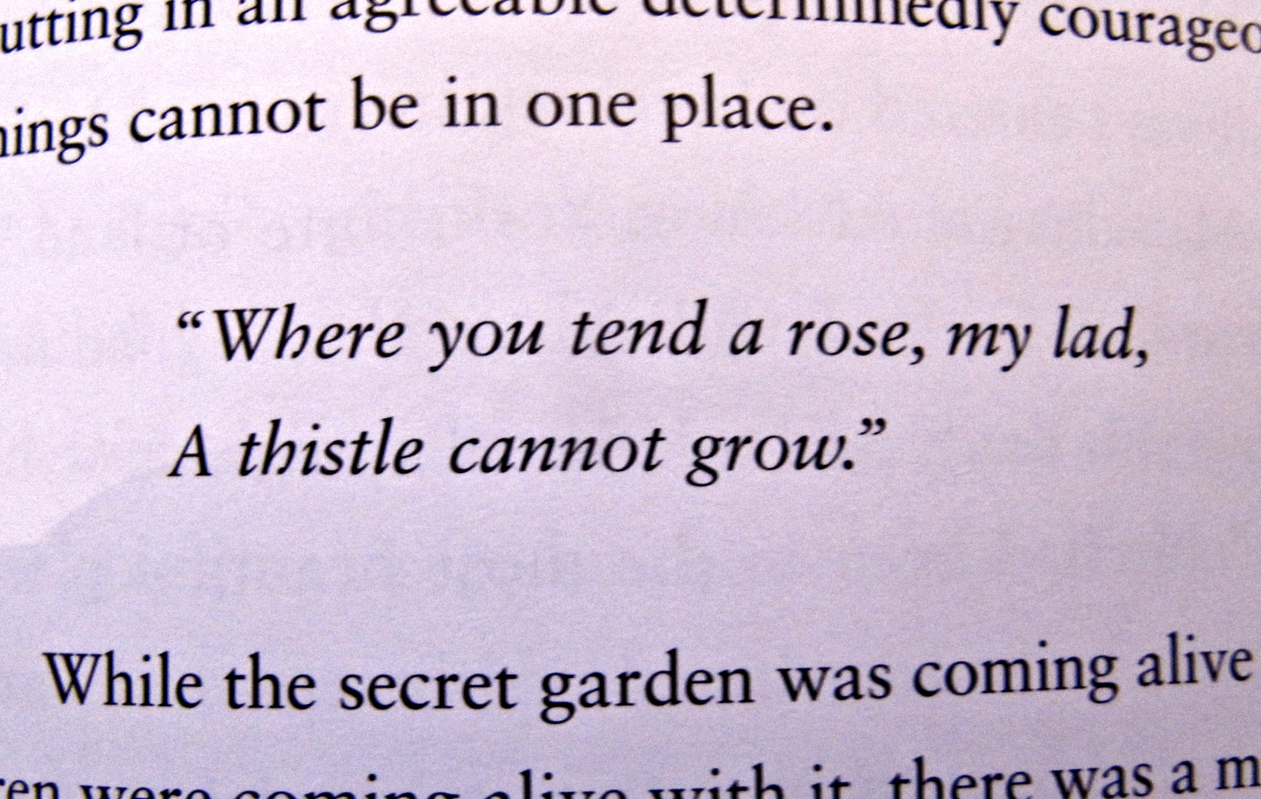 Garden Love Quotes Discussion Points From The Secret Garden