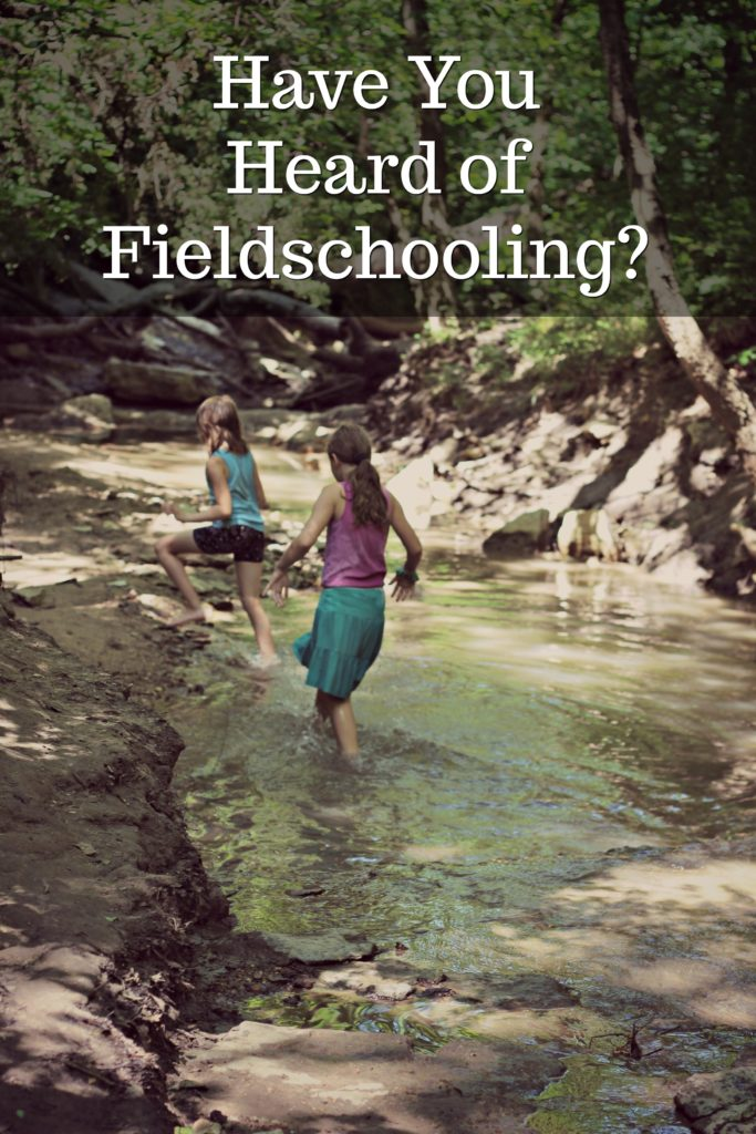 I did some research to find out what some homeschoolers are calling fieldschooling.